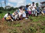 H270720親子農業体験ジャガイモ掘り (17)