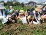 H270720親子農業体験ジャガイモ掘り (20)