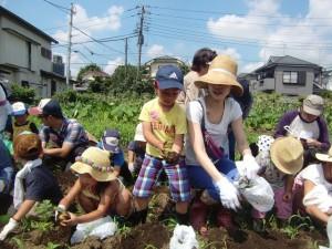 H270720親子農業体験ジャガイモ掘り (22)