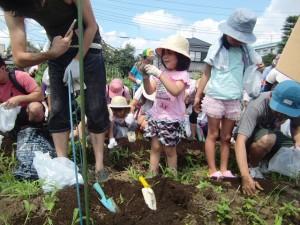 H270720親子農業体験ジャガイモ掘り (29)