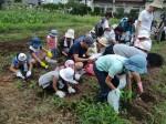 H270720親子農業体験ジャガイモ掘り (44)