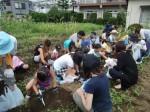 H270720親子農業体験ジャガイモ掘り (49)