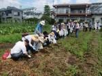 H270720親子農業体験ジャガイモ掘り (16)