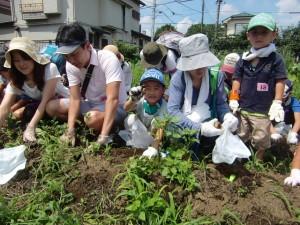 H270720親子農業体験ジャガイモ掘り (21)