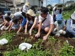H270720親子農業体験ジャガイモ掘り (27)