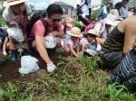 H270720親子農業体験ジャガイモ掘り (28)