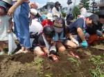 H270720親子農業体験ジャガイモ掘り (30)