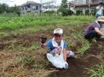 H270720親子農業体験ジャガイモ掘り (53)