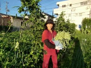 H270722農園作業 (6)