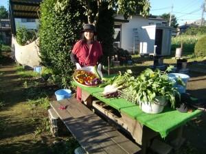 H270722農園作業 (9)