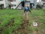 H270810ジャガイモ・トマト収穫 (6)
