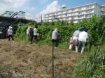 H270904いやし収穫体験 (8)