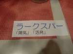 H270929茶の湯 (35)