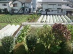H261007農園作業 (20)