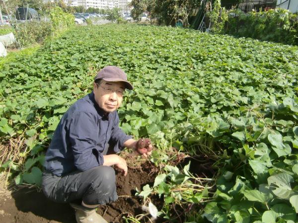 H261007農園作業 (18)