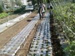 H261007農園作業 (7)
