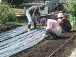 H271004農作業 (27)