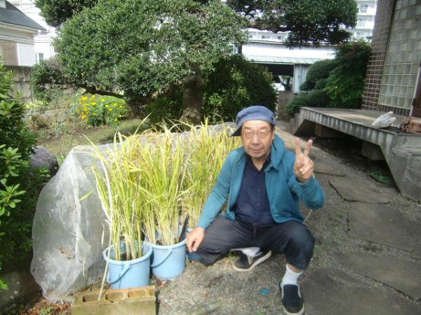 H271018野島農園 (1)