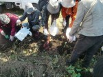 H271025サツマイモ掘り及び炊き出し訓練 (21)
