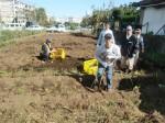 H271025サツマイモ掘り及び炊き出し訓練 (112)