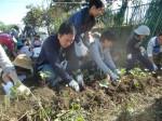 H271025サツマイモ掘り及び炊き出し訓練 (43)