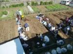 H271025サツマイモ掘り及び炊き出し訓練 (56)