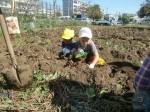 H271025サツマイモ掘り及び炊き出し訓練 (65)