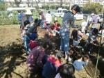 H271025サツマイモ掘り及び炊き出し訓練 (80)