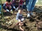 H271025サツマイモ掘り及び炊き出し訓練 (81)