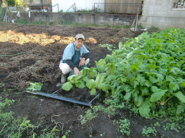 H271103農園作業 (1)