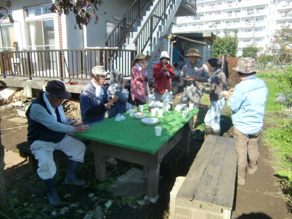 H271104農園作業(ラッカセイ) (14)