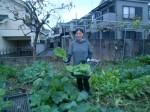 H271108農園作業ダイコン収穫 (15)