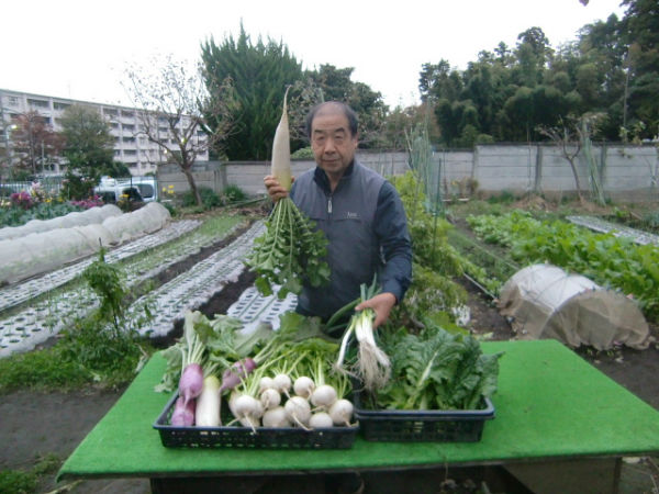 H271111農園作業 (17)