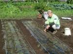 H271115農園野菜・おもてなしのお花 (2)