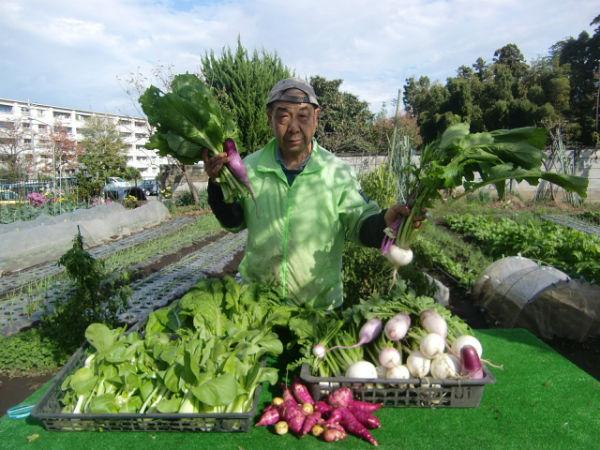 H271115農園野菜・おもてなしのお花 (4)