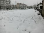 H280118野島農園に雪 (7)