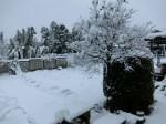 H280118野島農園に雪 (1)
