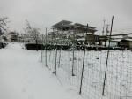 H280118野島農園に雪 (12)