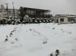 H280118野島農園に雪 (17)