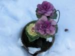 H280118野島農園に雪 (19)