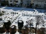 H280120野島農園に雪 (20)