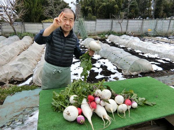 H280123農園収穫