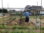H2802061農園野菜 (9)