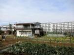 H280213農園収穫 (7)