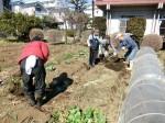 H280302農園ジャガイモ畝づくり (11)