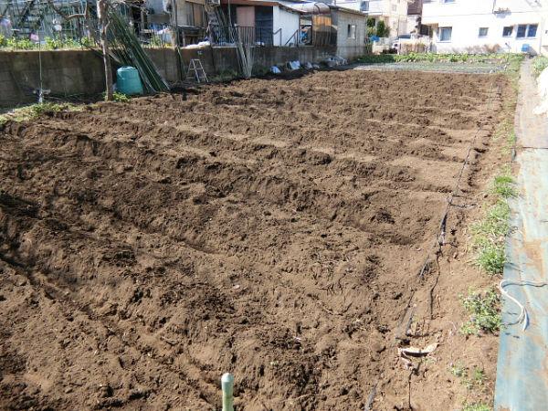 H280302農園ジャガイモ畝づくり (2)