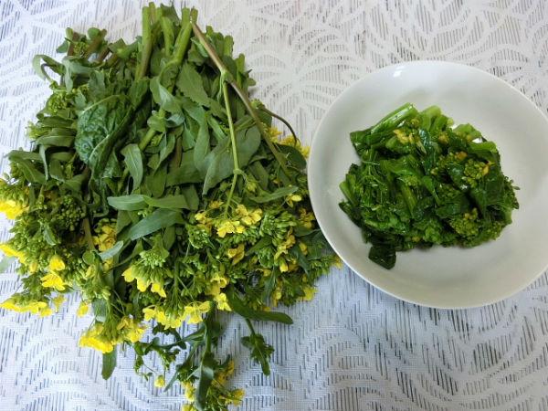 H280306農園菜の花 (20)
