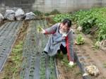H280306農園菜の花 (7)