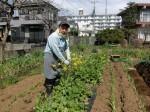 H280326農園菜の花 (4)