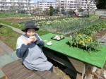 H280326農園菜の花 (7)